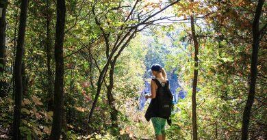 3 bonnes raisons de partir à la montagne en été