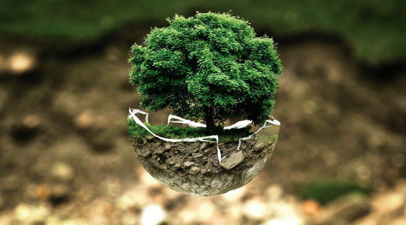 Prtiection de la nature et symbole de l'écologie